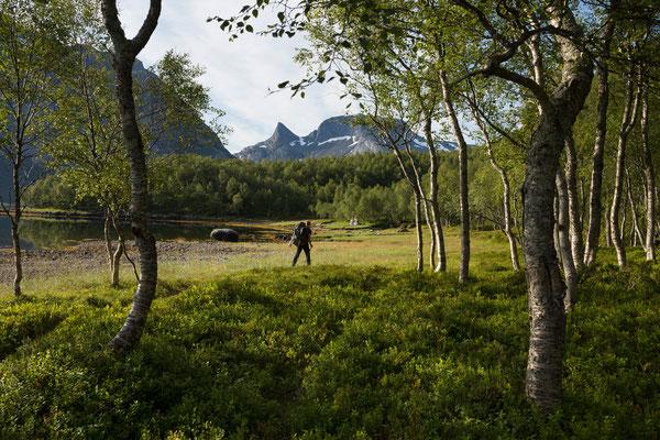 Tornesodden am Sjunkfjorden mit Middagstinden