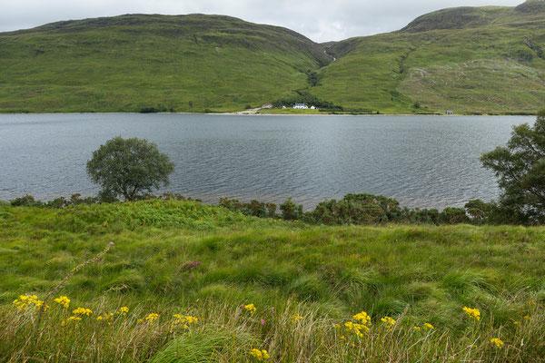 Aultanrynie, Loch More