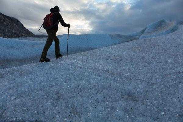 namenloser Gletscher zwischen Motzfeldt Sø und Jespersen Bræ