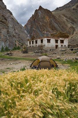 Zingchan, Zanskar, Indien