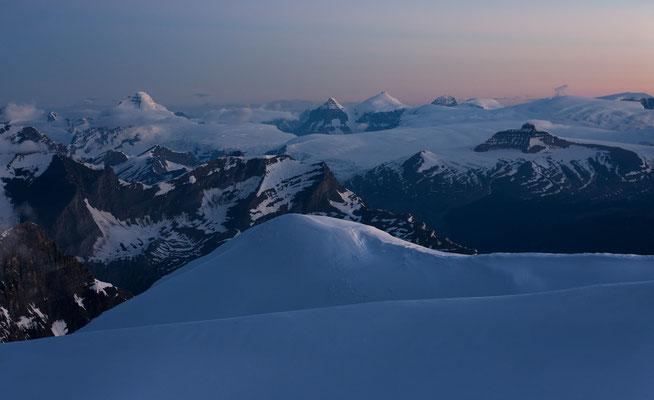 Columbia-Icefield (Mt Columbia, Twin-Peaks) from Lyell Peak 3