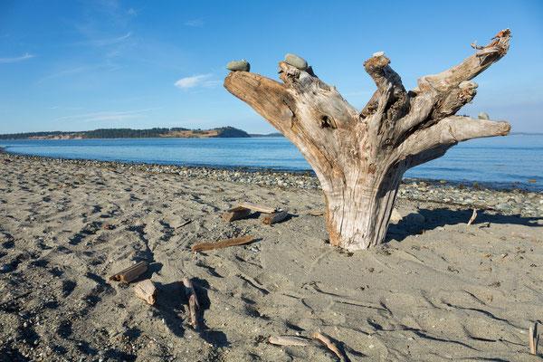 Island View Beach, Cordova Bay, Vancouver Island