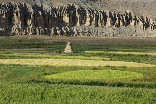 Zanskar Valley bei Pidmo