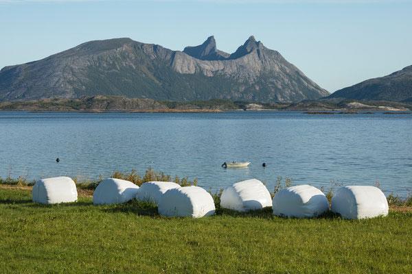 Leinesfjorden und Skotstindan (Steigen)
