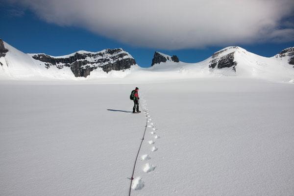 Lyell-Icefield, Rocky Mountains, Kanada
