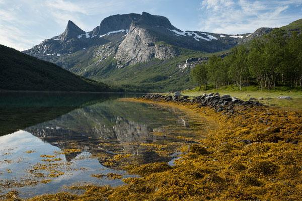 Lappøyra am Sjunkfjorden mit Elvhammaren und Middagstinden