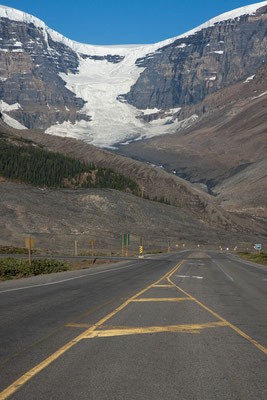 Icefields Parkway, Columbia Icefield