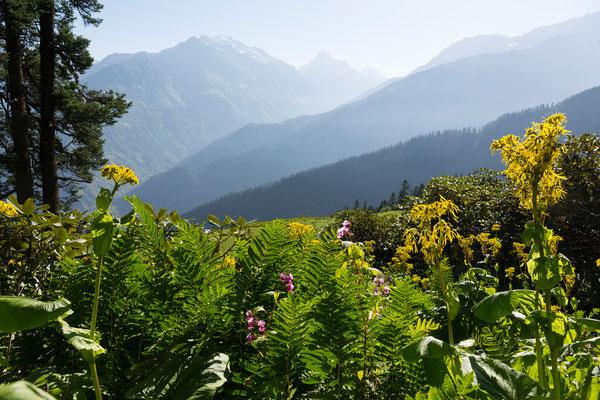 Blick ins Parvati Valley