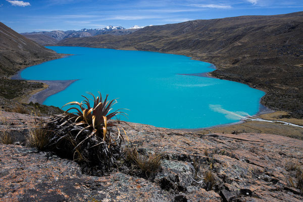Singrenacocha, Vilcanota, Peru