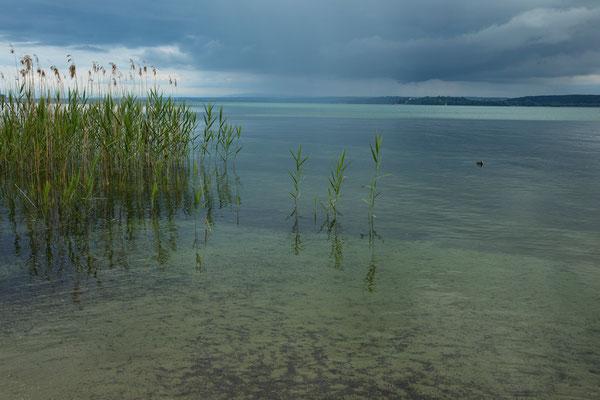 Überlinger See, Bodensee