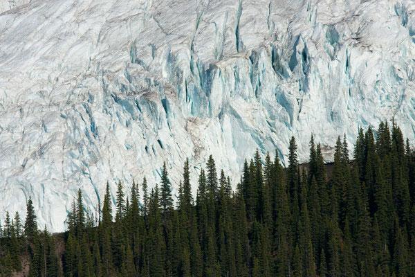 Berg Glacier, Mt Robson