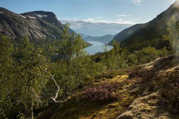 Nordfjorden-Sørbukta (Sjunkhatten NP)
