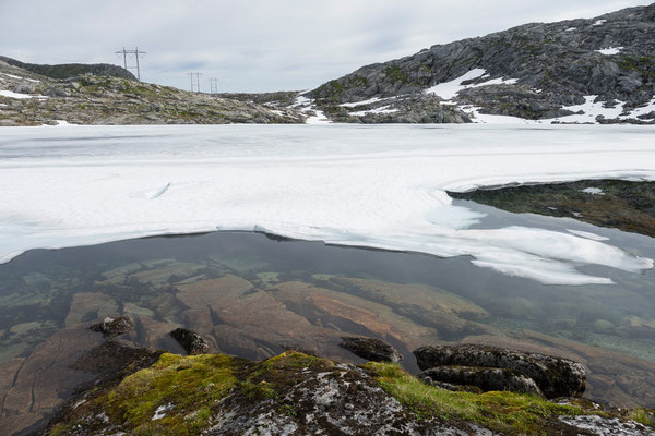 Grønkvannlitjørna (Nordfjord)