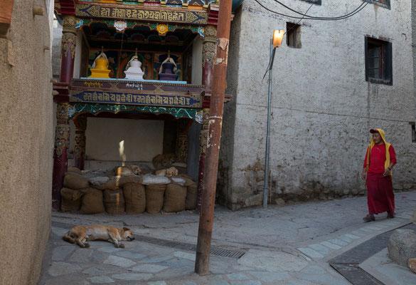 Leh, Ladakh, Indien