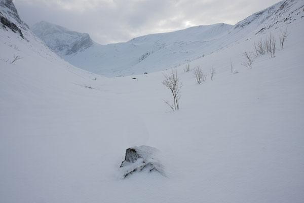 Moskodalen, Nordreisa, Troms, Norwegen