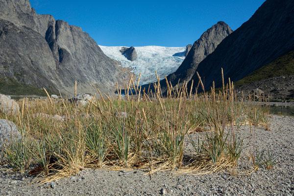 Tasermiutfjord und Sermeq, Grönland