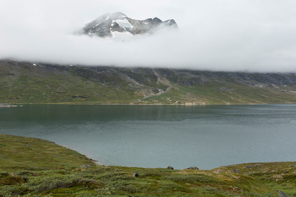 Kobbefjord (Kangerluarsunnguaq)