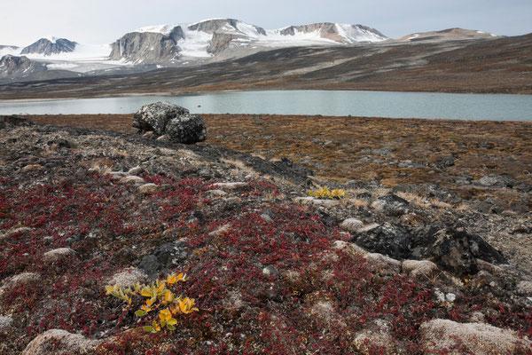 Qororssuaq, Nussuaq, Grönland