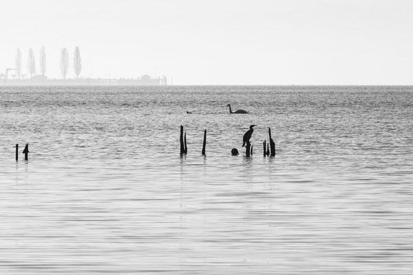 Unteruhldingen, Blick auf Obersee