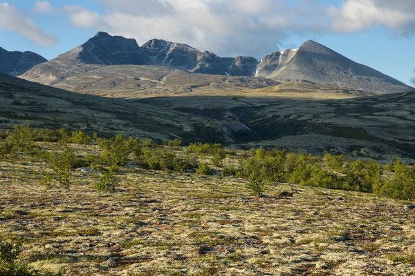 Dørålen mit Midtronden und Digerronden, Rondane
