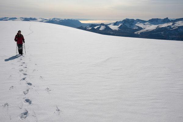 Blick vom Ege Richtung Saqqaq, Nussuaq