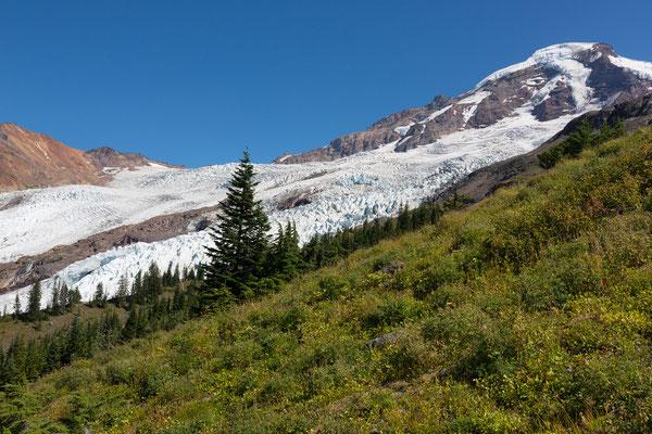 Mount Baker, Heliotrope Trail (2015)