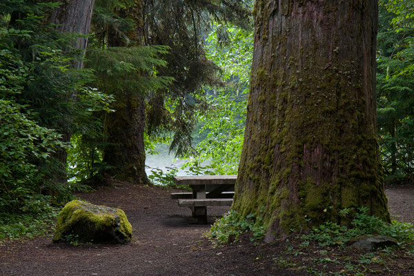Silver Fir Campground, Mt Baker-Snoqualmie NF