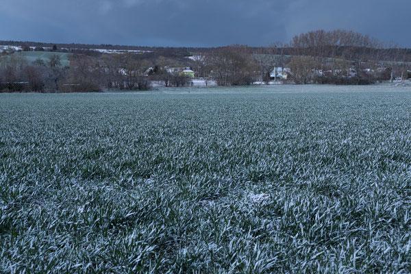 Frost im April, Berka, Wipper