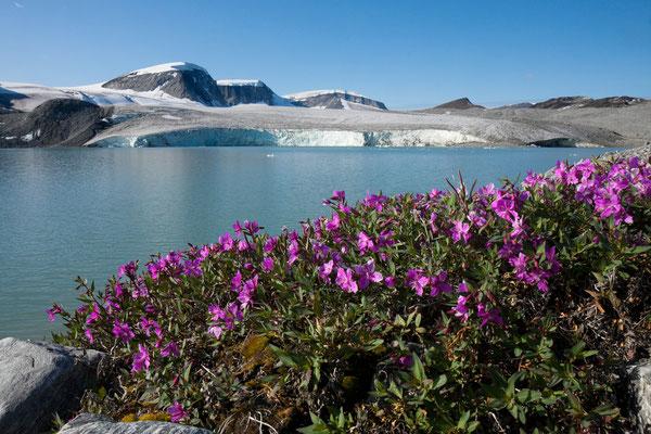 unkartographierter Gletschersee auf Nussuaq, Grönland