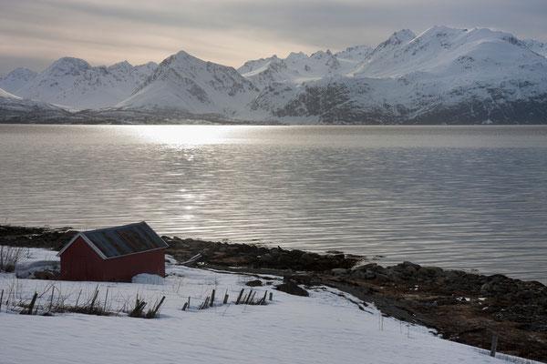 Lyngenfjord und Lyngenalpane, Troms, Norwegen