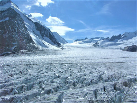 Elite Flights, Alpenrundflug mit Gletscherlandung, Helikopterflug,  Gletscherflug, Aletschgletscher, Konkordiaplatz, Lötschenlücke, Fotoflug