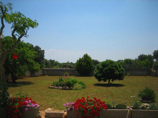 Blick vom Haus auf die Südwiese
