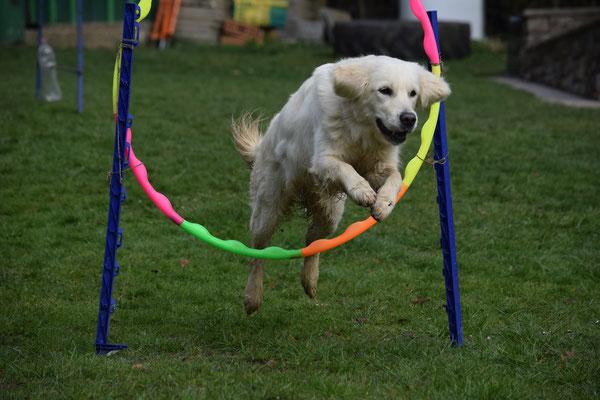 über den Hula-Hopp-Sprung