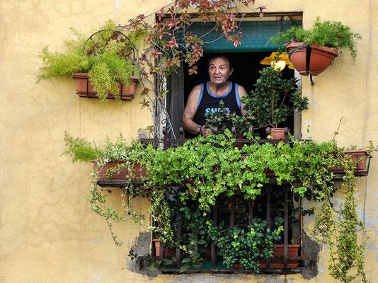 """Fenster""©Werner Kaiser"