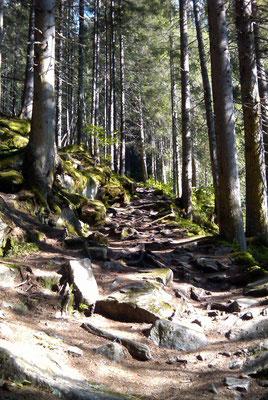 Weg zur Maxhütte