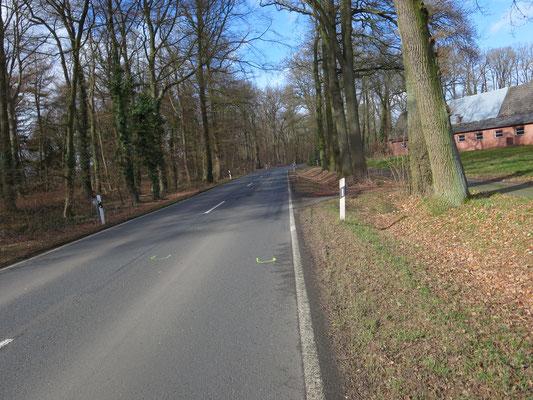 L 354 in Emtinghausen-Bahlum: Trotz einiger Kurven und Schulbushaltestellen ist Tempo 100 erlaubt.
