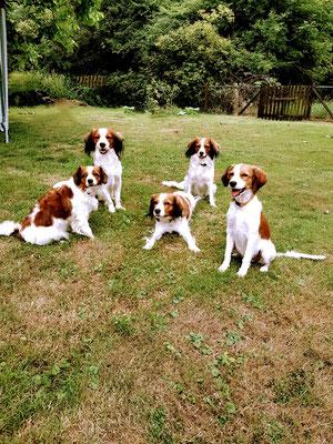 v.l.n.r.: Lilly, Flash, Dina, Joy; Mitte: Mama Benja