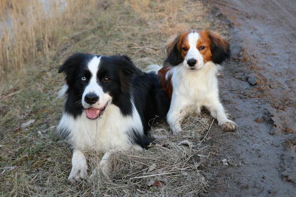 Marley und Flash