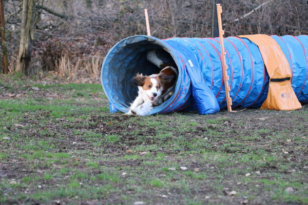 Flash liebt den Tunnel