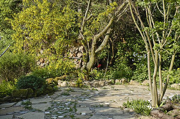 Naturgarten-Teilansicht