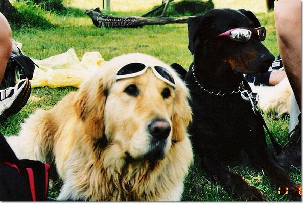 Bruno & Alf