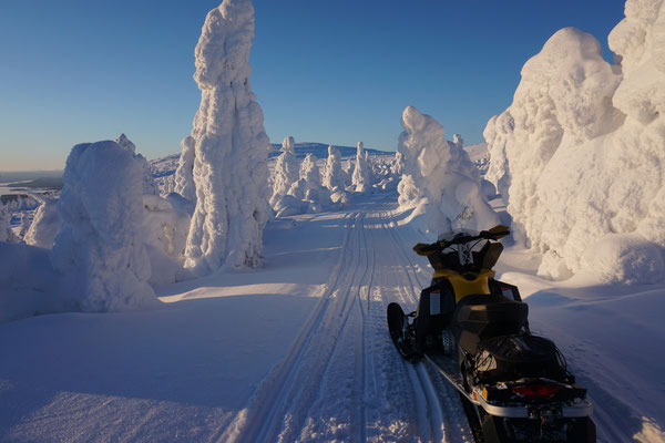 Snowmobile tour in january