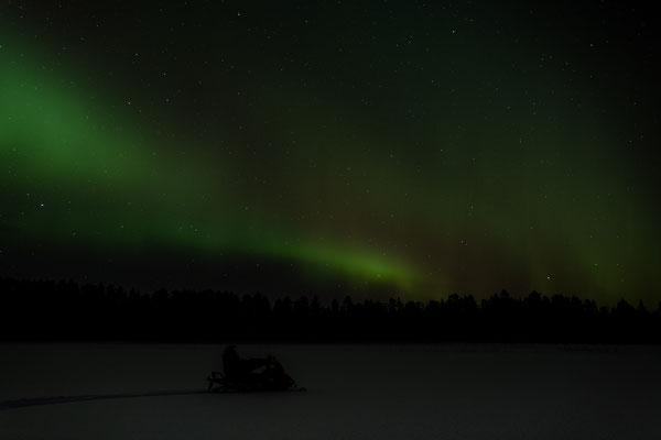 Eine Fahrt unter den Polarlichtern