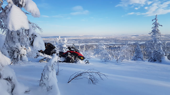 Mit dem Schneemobil Lapplands Weiten erkunden