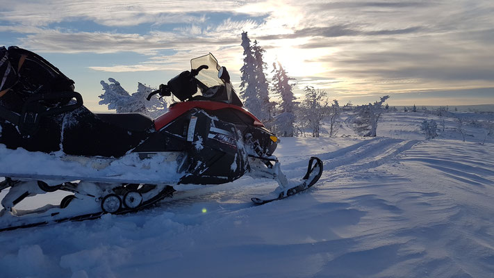 Schneemobiltouren in Lappland