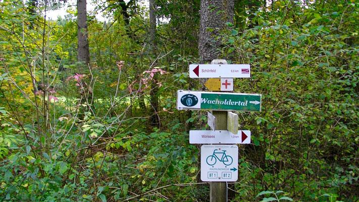 Der Jean-Paul-Weg führt durchs Wacholdertal