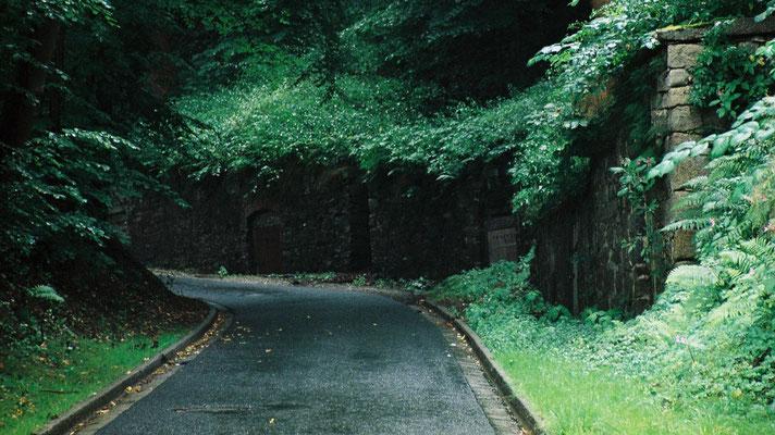 Straße hinauf zum Katharinenberg in Wunsiedel