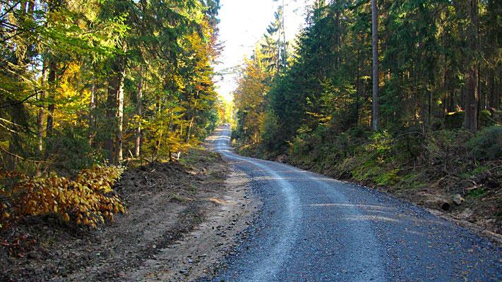 Im Oberwaizer Forst wieder ein »Forstdepressionsweg«