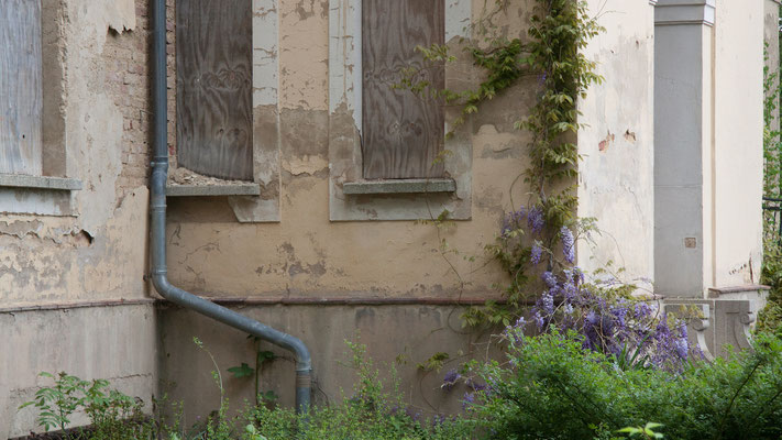 Impressionen Schloss Tannenfeld heute