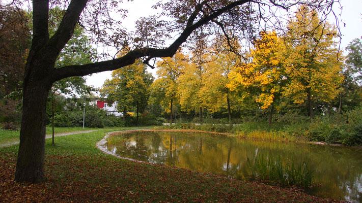 Herbststimmung im Miedelpark